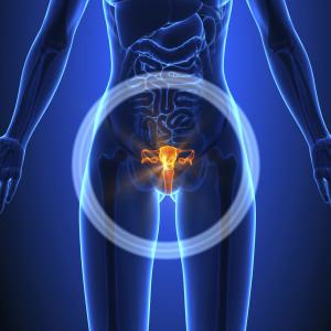 Les mycoses vaginales sont des infections très fréquentes.
